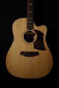 Cole Clark FL2AC3-LS Lloyd Spiegel Signature guitar